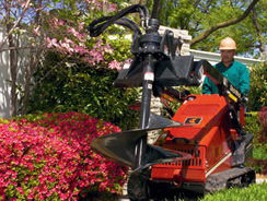 Where to find SK650 Auger Attachment in Redwood City